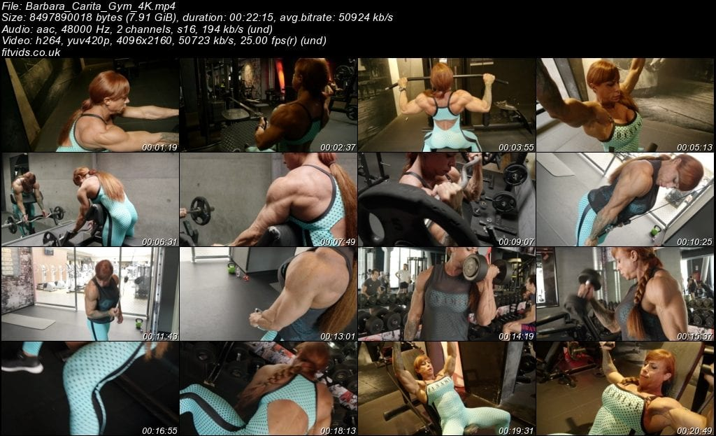 This image has an empty alt attribute; its file name is Barbara_Carita_Gym_4K-1024x623.jpeg