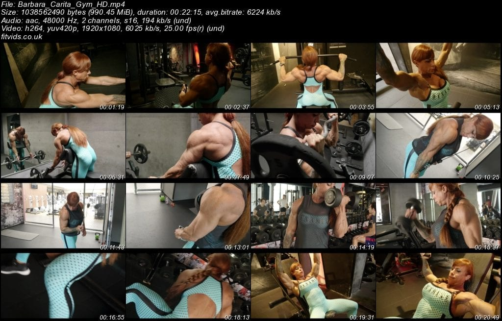 This image has an empty alt attribute; its file name is Barbara_Carita_Gym_HD-1024x655.jpeg